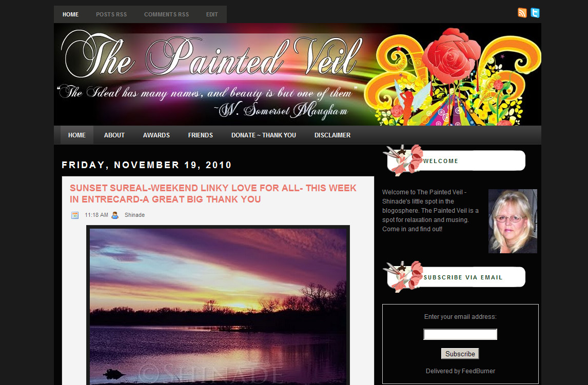 Blog Makeover #71: The Painted Veil